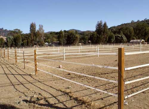 fil cloture chevaux
