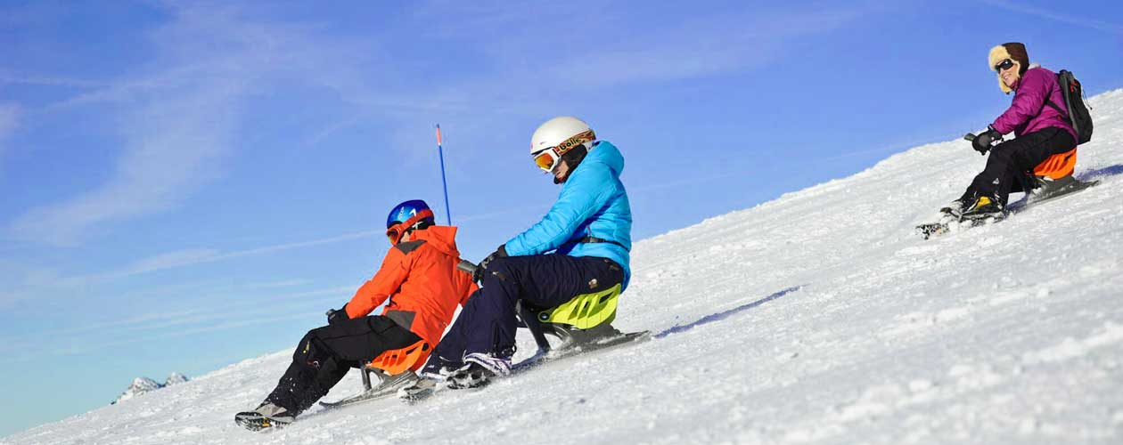 luge ski